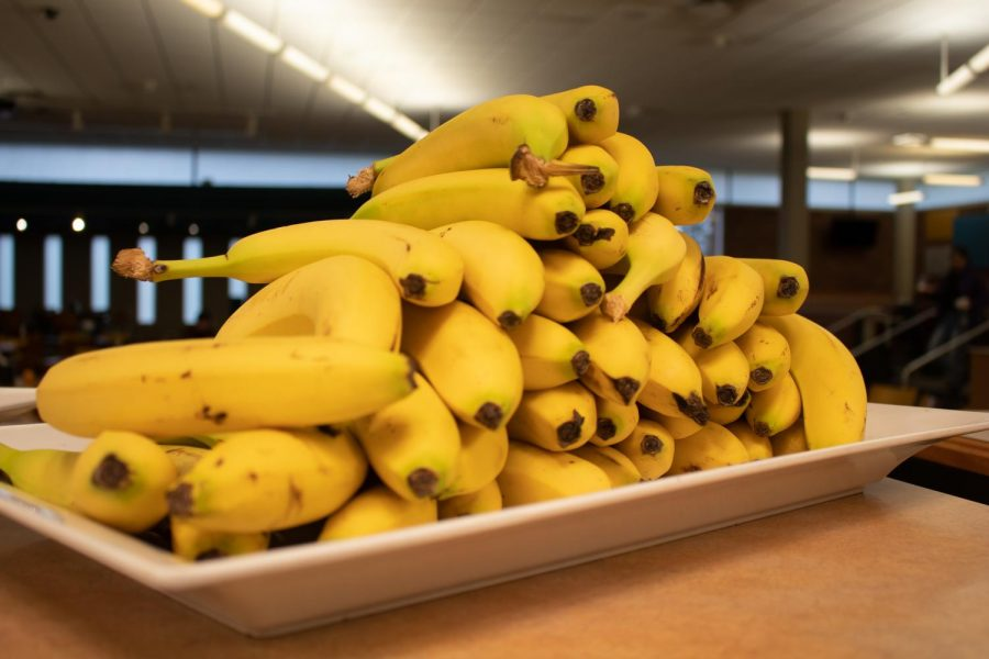 A stack of bananas found in the Kline Campus Center in which students grab for snacks and for in-between classes.