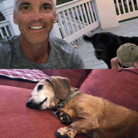 "President David Bushman said his dogs Penny (top) and Ally (bottom), are ""not very helpful when it comes to my Biology 110 class, meetings with the vice presidents or trustees,"" so they tend to do dog things like sleeping on the couch when he's working. ""But their superpower is stress reduction after work,"" said Bushman."