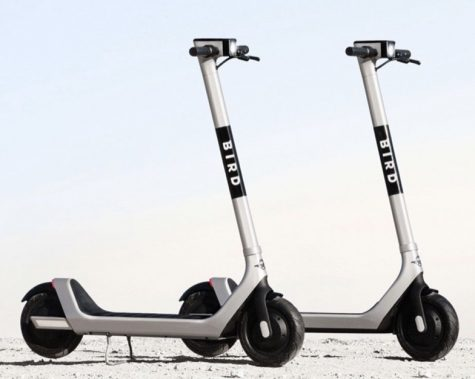 Bird scooters arriving in Bridgewater creates a platform for debate.
