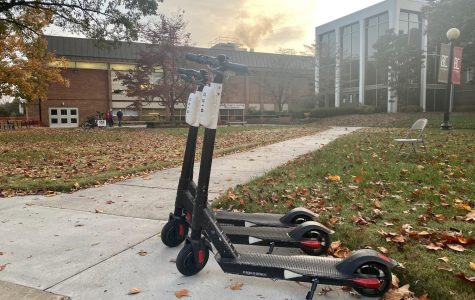 Bird scooters on campus