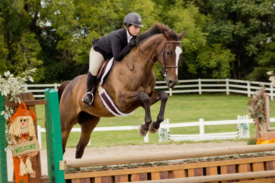 Emily - equestrian
