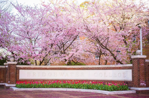 Bridgewater College in Spring time