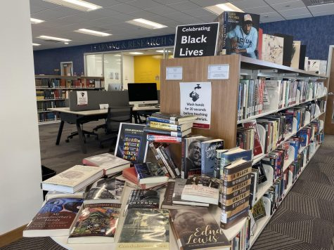 Books provided for the month of Feb. to celebrate Black Lives