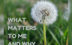 What Matters to me and Why